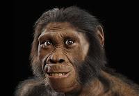 πίθηκος,πολύ πιθηκάνθρωπος,γενετική ανωμαλία,ape,human ape,genetically anomaly