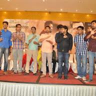 Nannaku Prematho Movie Suceses Meet Photos