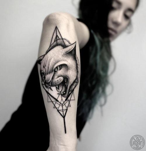este_feroz_gato_tatuagem