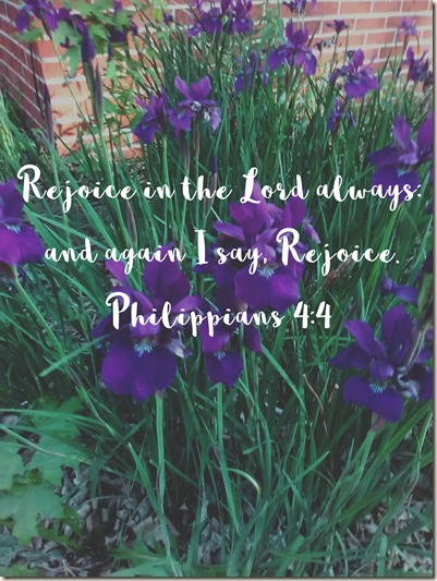 Scripture and a Snapshot 5618