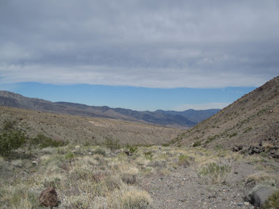 Looking back down Jayhawker. We'd heard there were petroglyphs up in this area.... ©http://backpackthesierra.com