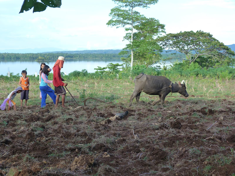Camotes et Poron island - philippines1%2B1033.JPG