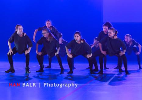 Han Balk Voorster Dansdag 2016-2990.jpg