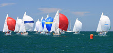 Fleet of J/24 one-design sailboats off Australia