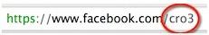 nombre de usuario en Facebook