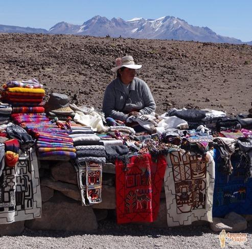 Vicuñas Volcanes Arequipa Chivay Perú 35