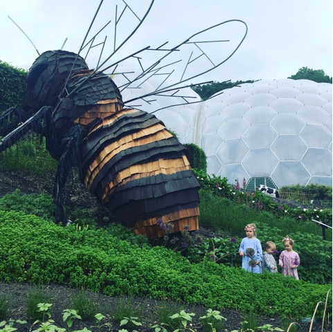family day out at the eden project