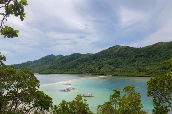 10 Potret Unik Pulau Ular di Brasil Bikin Merinding dan Penasaran