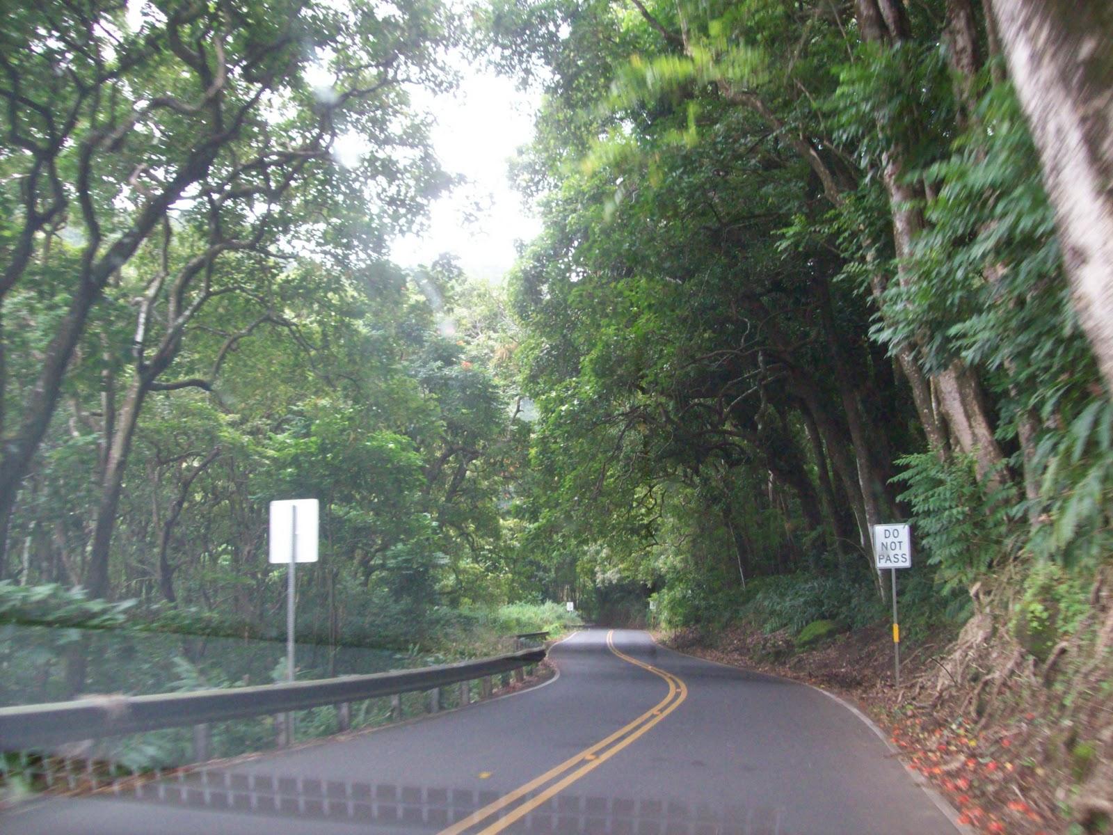 Hawaii Day 5 - 114_1459.JPG