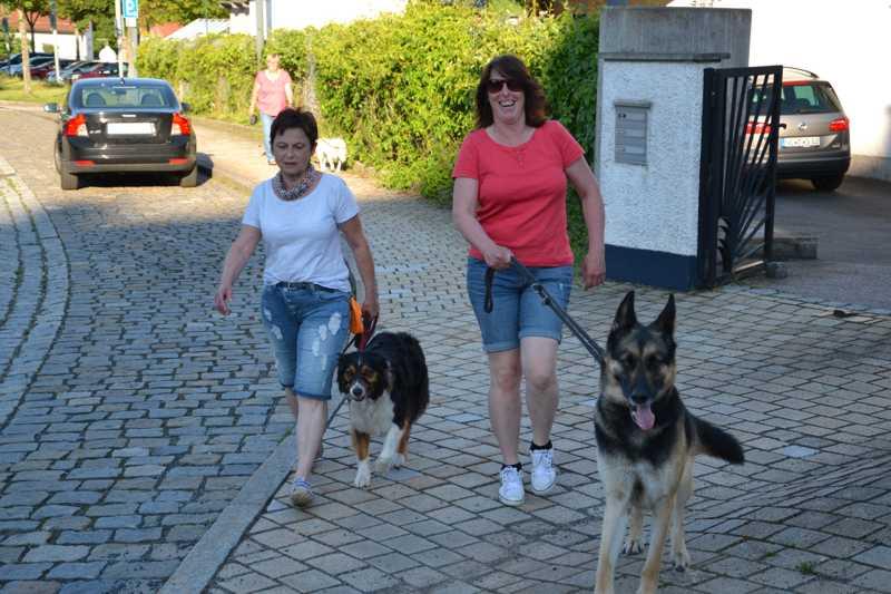 7. Juni 2016: On Tour in Neustadt a.d. Waldnaab - DSC_0450.JPG