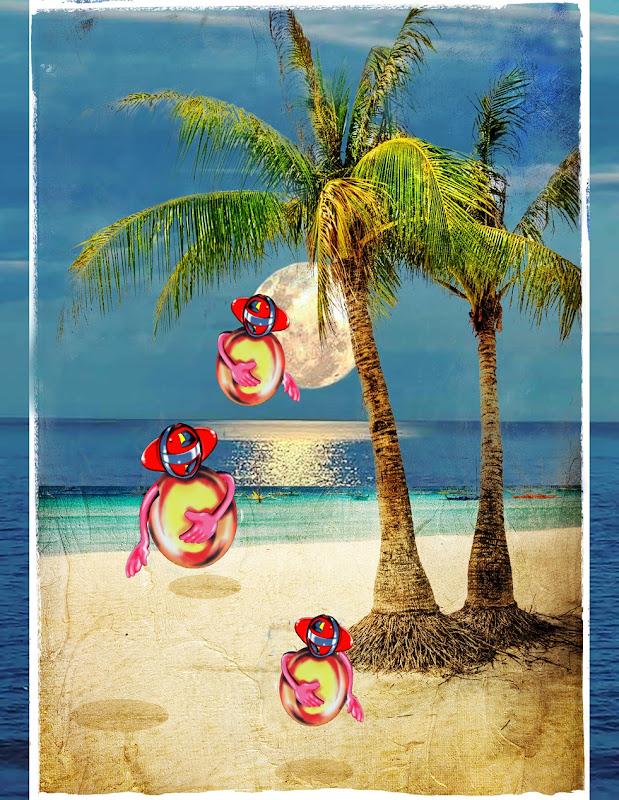 alohapalms