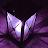 Shadow Lantern avatar image