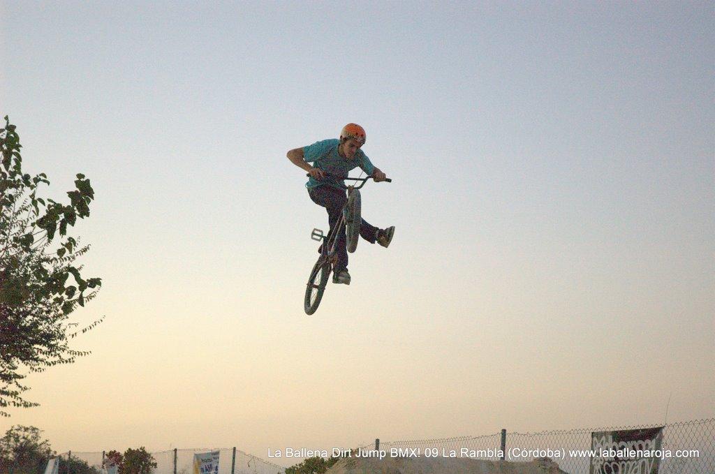 Ballena Dirt Jump BMX 2009 - BMX_09_0165.jpg