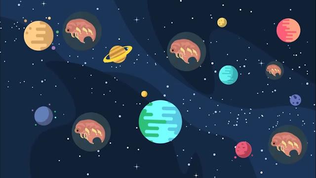 Tardigrades in space