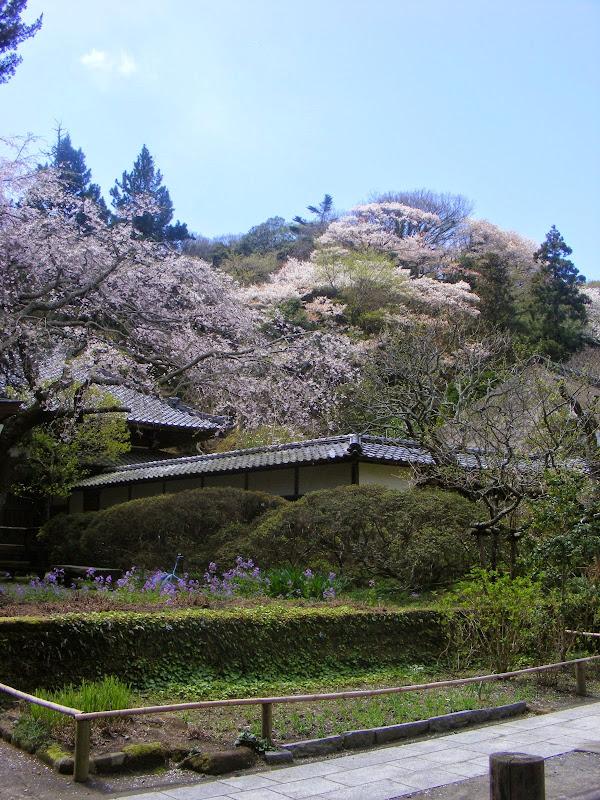 2014 Japan - Dag 7 - julia-DSCF1339.JPG