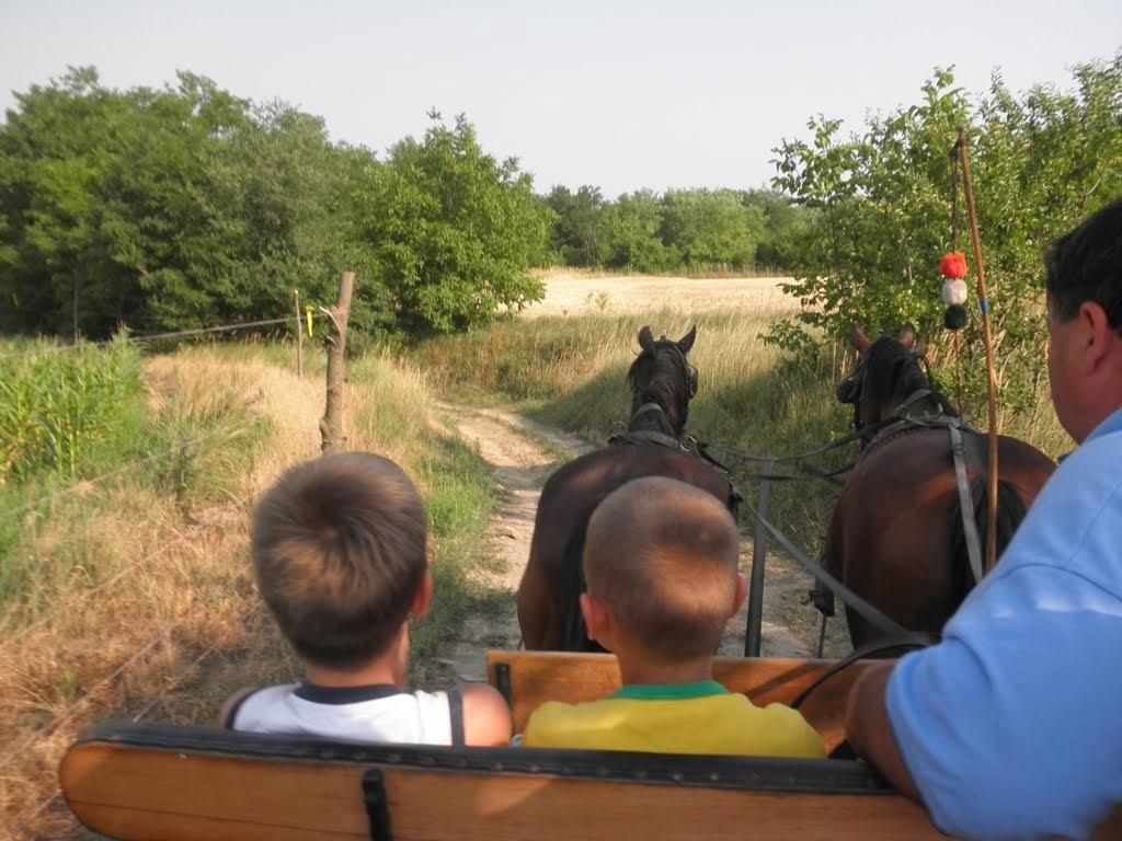paardrijden 003