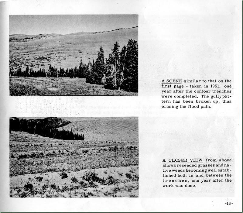 Mt. Pleasant Story p 13