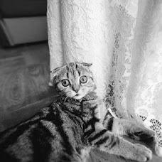 Свадебный фотограф Егор Дейнека (deyneka). Фотография от 27.07.2015