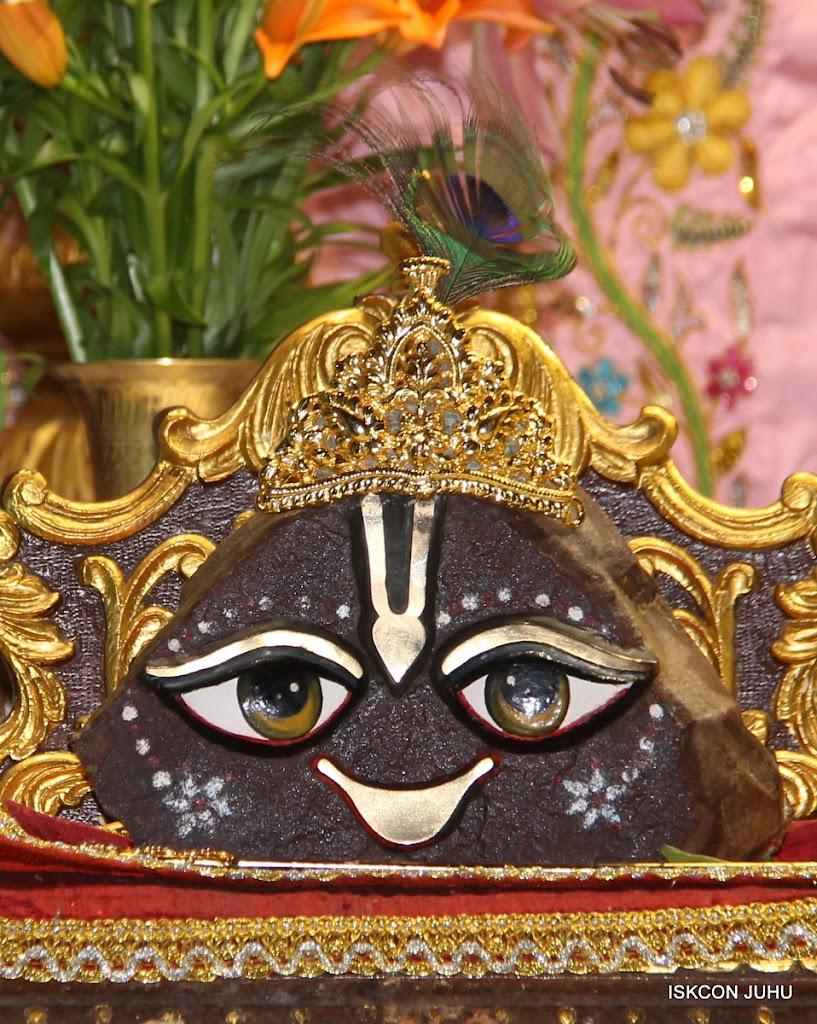 ISKCON Juhu Mangal Deity Darshan on 30th May 2016 (21)