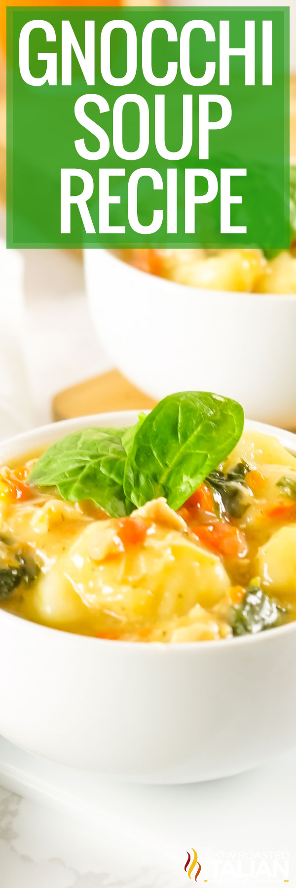 Gnocchi Soup Recipe closeup