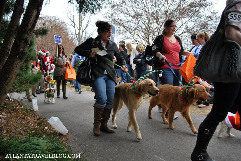 Reindog Parade
