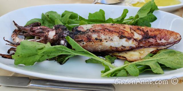 Ayvalık'taki Deniz Kestanesi restoranında bütün kalamar ızgara, mürekkebiyle