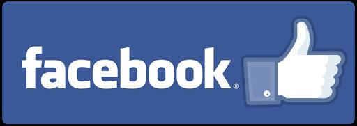 Litera 13 Social media