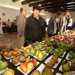 Výstava ovoce, zeleniny a dalších výpěstů 2015