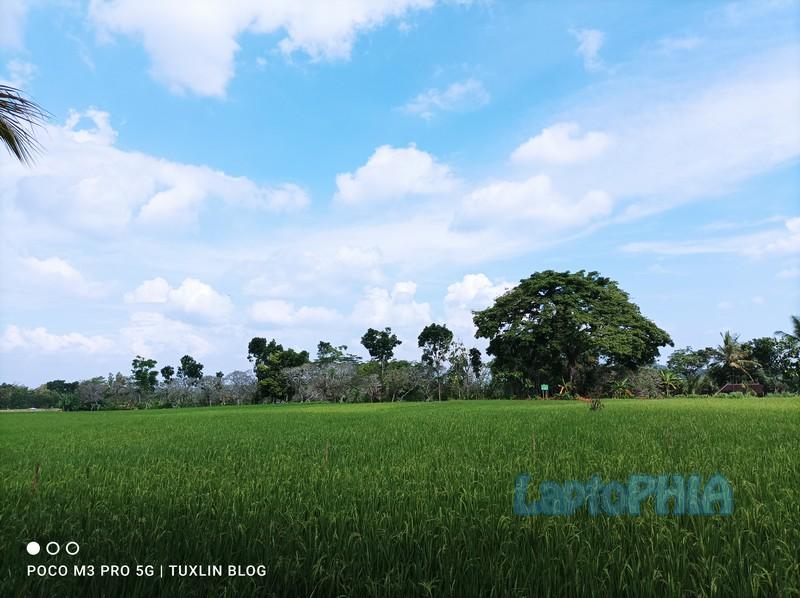 Hasil Foto Kamera Poco M3 Pro 5G