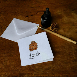 Larch card :: www.AliceDrawsTheLine.co.uk