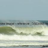 _DSC9995.thumb.jpg