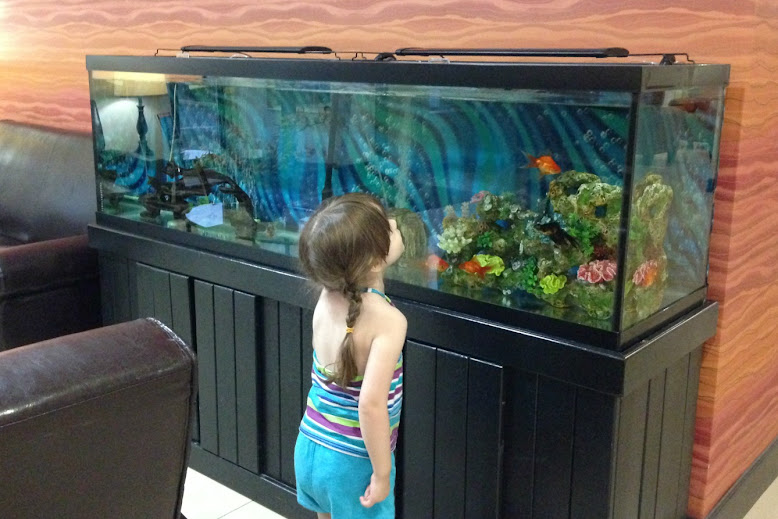 Fish Tank in the Hotel Lobby in Corydon, Indiana