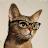 Rachel Lachapelle avatar image