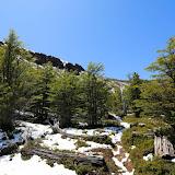 Neve na Reserva Nacional Coihayque, Chile