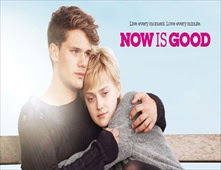 فيلم Now Is Good بجودة BluRay