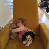 Chair & Horsey