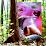 skunk claudio's profile photo
