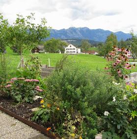 Blick über neues Blumenbeet ins DorfIMG_0720.JPG