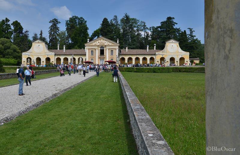 Villa Maser mostra ciliegie 04