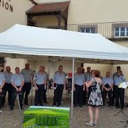 Festival Riquewihr juin 2016 (29).jpg