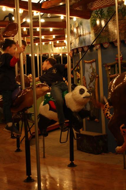 Zoo Snooze 2015 - IMG_7109.JPG