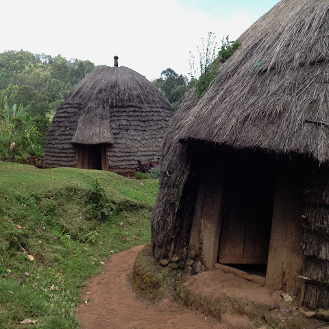Thatched houses in the Ethiopian highlands