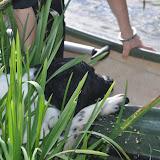 Survival voor Baas en Hond 2012 - DSC_0075.JPG
