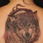 lobo com duas penas de índias.jpg