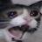 Aydro Gaming avatar image