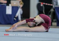 Han Balk Fantastic Gymnastics 2015-0300.jpg