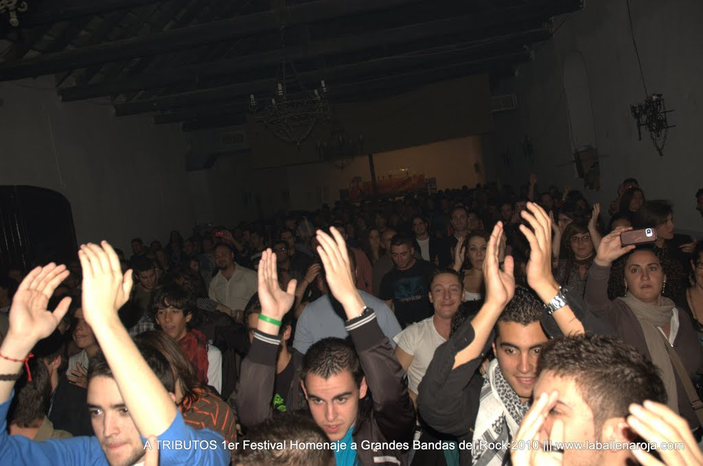 A TRIBUTOS 1er Festival Homenaje a Grandes Bandas del Rock 2010 - DSC_0035.jpg