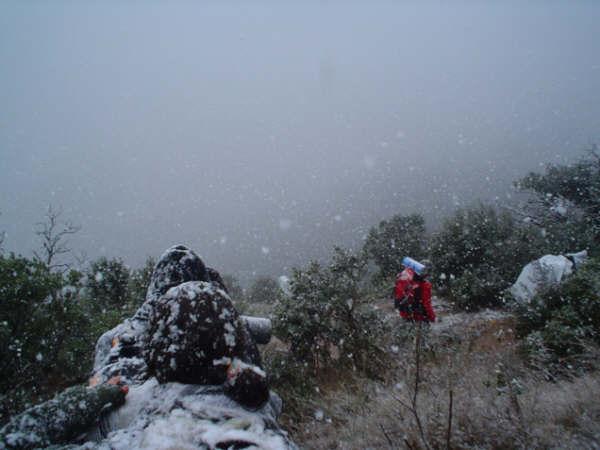 Campaments amb Lola Anglada 2005 - X112E4%257E1.JPG