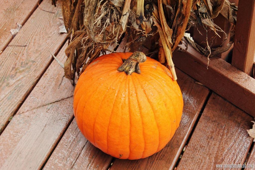 [pumpkin5%5B10%5D]