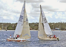 J/24 one-design sailboats- sailing upwind off Barbados